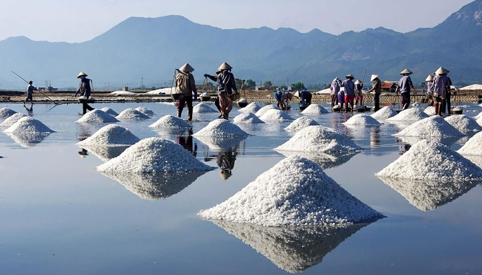 Nha Trang Experiencing the salt field tour (full day) – Private tour